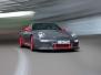Grey-Raspberry GT3 RS