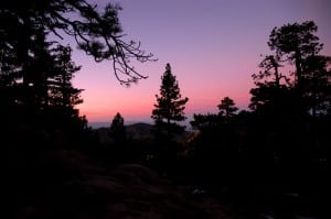 Angeles Forest at sunset